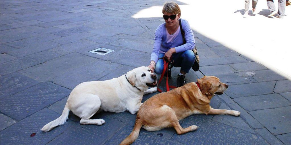 Städte und Ausflüge mit Hund in der Toskana