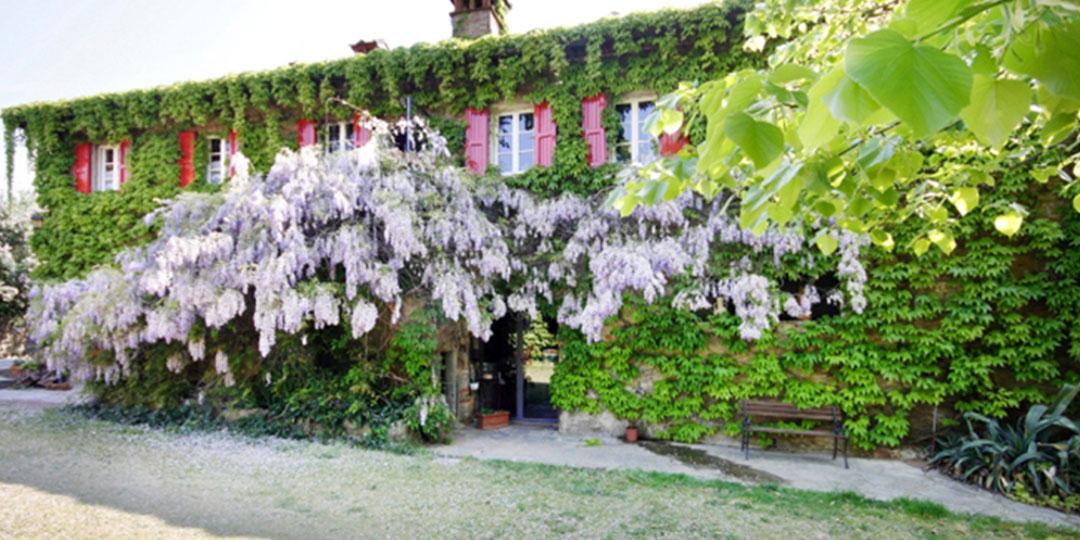 Toskana Spezial - Toskana Urlaub im Internet buchen