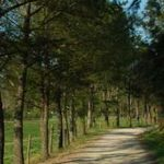 Spazierwege in der Umgebung