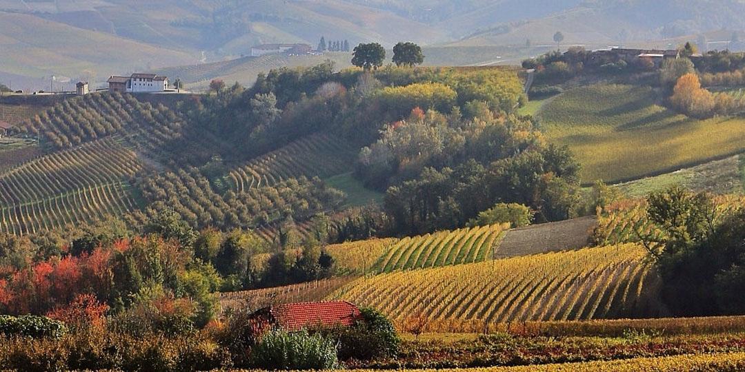 Pisanische Hügel